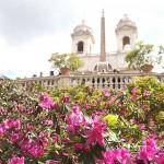 Treptele Spaniole printre flori de azalee